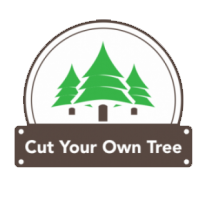 Cut Your Own Tree